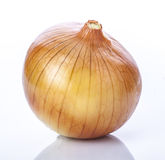Ripe onion. On a white background royalty free stock image