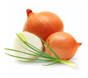 Ripe onion isolated on a white background Royalty Free Stock Images
