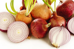 Ripe onion and sprout onion on  white Royalty Free Stock Photo