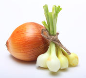 Ripe onion Stock Photo