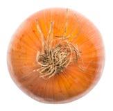 Ripe Onion Stock Photography