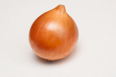 Ripe onion Royalty Free Stock Image