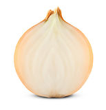 Ripe onion Royalty Free Stock Image
