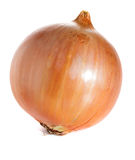 Ripe onion Stock Images