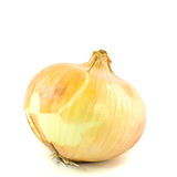 Ripe onion on a white background Stock Images