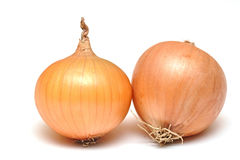 Ripe onions Stock Photos