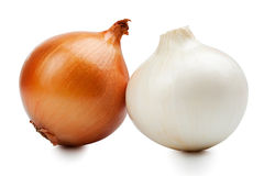 Ripe onions Royalty Free Stock Image