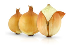 Ripe onions, creative concept. Ripe onions with zipper, creative concept Royalty Free Stock Photos