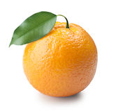 Ripe orange Stock Image