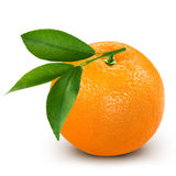 Ripe orange. Isolated on white background + Clipping Path Royalty Free Stock Photography