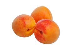 Ripe orange apricots isolated on white background. The ripe orange apricots isolated on white background Stock Image