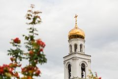 Ripe orange berries of the Rowan tree and the Orthodox Church in the background. The City Of Samara, Russia. The Iversky monastery Royalty Free Stock Image