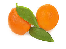 Fresh ripe orange fruits with leaves  on white background Stock Photography