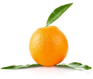 Ripe orange with green leaves Royalty Free Stock Photography