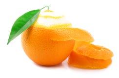 Ripe orange isolated. Royalty Free Stock Image