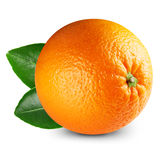 Ripe orange isolated Stock Images