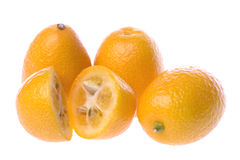 Ripe orange kumquats Stock Image