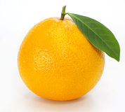 Ripe orange with leaves Stock Image