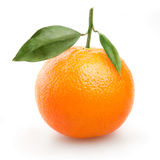Ripe orange with leaves on white background Stock Images