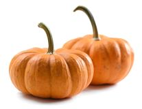 Ripe orange organic pumpkins isolated on white background Stock Images