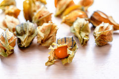Ripe orange physalis Royalty Free Stock Photography