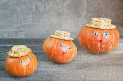 Ripe orange pumpkin Stock Photography