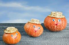 Ripe orange pumpkin Stock Photos