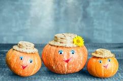 Ripe orange pumpkin Royalty Free Stock Images