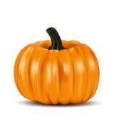 Ripe orange pumpkin vegetable royalty free illustration