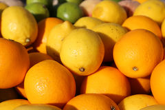 Ripe Orange and Sicilian lemons for sale in greengrocers shop in Stock Image
