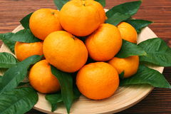 Ripe orange tangerines with green leaves in plate Stock Photography