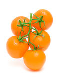 Ripe orange tomatoes in drops of water isolated on a white backg Stock Images