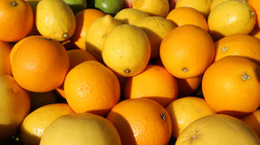 Ripe Orange and yellow Sicilian lemons for sale in greengrocers Royalty Free Stock Images