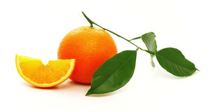 Ripe oranges with green leaves. Royalty Free Stock Photos