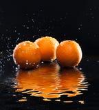 Ripe oranges Royalty Free Stock Photos