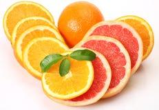 Ripe oranges and tangerines Stock Image