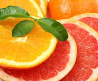 Ripe oranges and tangerines Royalty Free Stock Photo