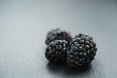 Ripe organic blackberries on slate background royalty free stock photo