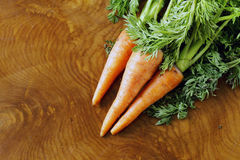 Ripe organic carrots with green leaves Royalty Free Stock Photo