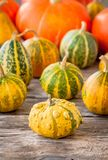 Ripe organic colored pumpkins Stock Photography