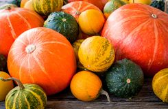 Ripe organic colored pumpkins Royalty Free Stock Photos