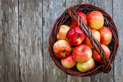 Ripe organic red apples in a basket Stock Photography