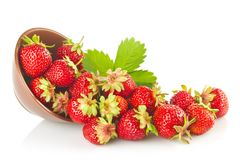 Ripe organic strawberries in tureen with green leaves Stock Image