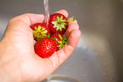 Ripe organic strawberry in hand under running water on kitchen Royalty Free Stock Image