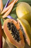 Ripe papaya cut half Stock Images
