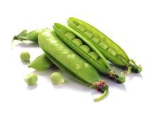 Ripe pea vegetable Stock Image