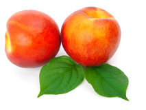 Ripe peach Stock Images