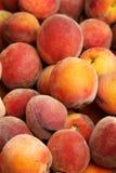 Ripe peach fruit Royalty Free Stock Image