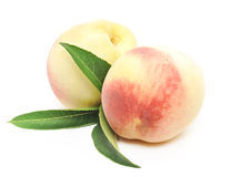 Ripe peach fruits with green leaves Stock Images