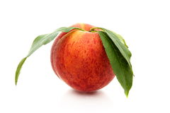 Ripe peach with green leaves. Royalty Free Stock Photos